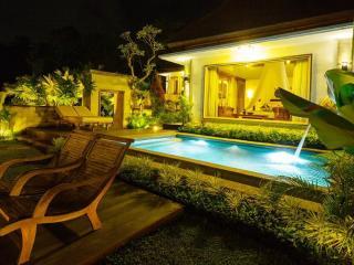 Ubud Pool Luxury Villa 1BR