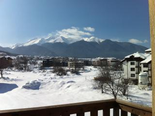 Bansko Ski Apartment 2 Bedrooms (Prespa)