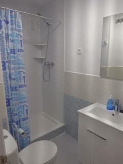 Baño principal con ducha.