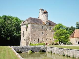 le Vieux Château du 15ème siècle