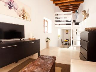 Amazing apartment in Ibiza's historical Old Town