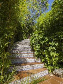 escalera exterior ajardinada con bambu,landscaped outdoor staircase with bamboo,
