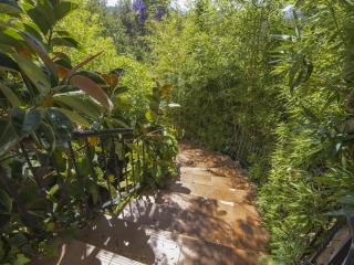 escalera exterior ajardinada con bambu,landscaped outdoor staircase with bamboo,