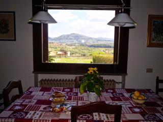 Villa in Chianti near Florence