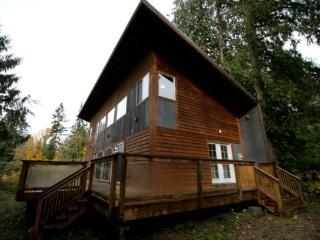 #58 Pet friendly cabin with a hot tub and wifi!, Glacier
