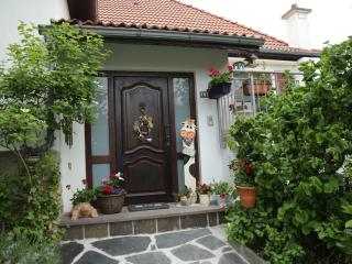 homely 1 bedroom close to nature and city, Frisange