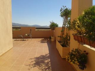 Our side terrace (15 paces long) with plants and view to mountains.