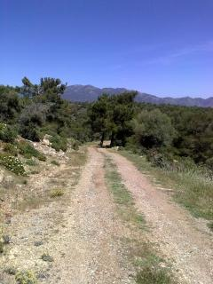 Walking and cycling trials near to the property at Dierona
