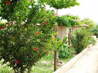 Mwana House, Nungwi
