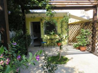 Fantastic Studio Angie in Flower Garden