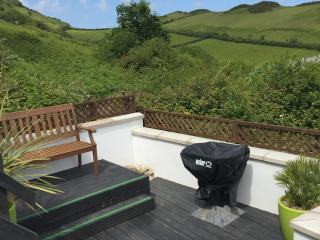 Bench and BBQ - Lower decking