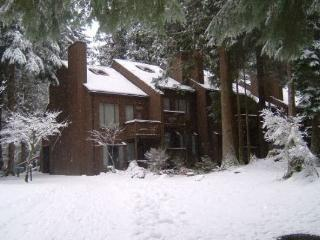 Snowater Condo #62 -  Sleeps 2 - Lots of Community, Glacier