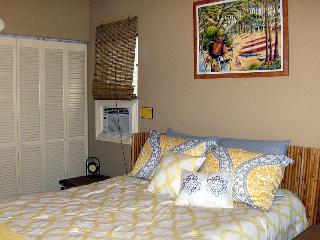 Queen size bed in Bedroom 1 with closet view