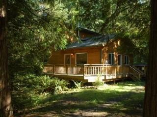#64 Pet friendly cabin near Mt. Baker!, Glacier