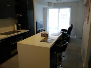 Newly constructed luxury condo next to Queens Park, Toronto
