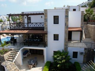 Villa Amice, Gundogan