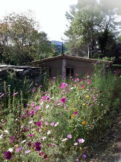 Du Printemps à l'automne un jardin bio fleuris et de bons légumes au potager.