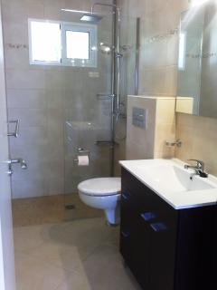 2 bathrooms downstairs (nearly identical)