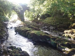 Stunning Killarney and Lakes