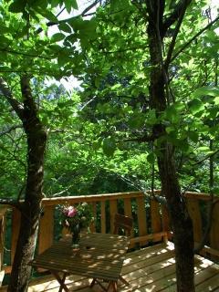 La terrasse dans les branches