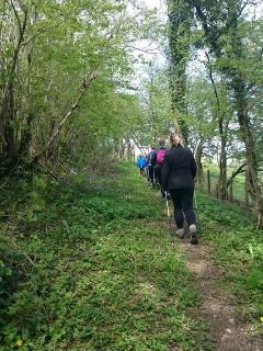 book our guided walking, nordic walking, or guided cycling, please email for more details