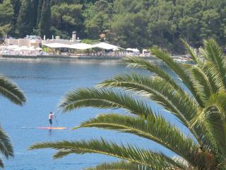 Apartment Riva 2,  Seafront, 1 Bedroom Sleeps 4, Cavtat