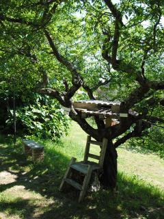 La casina sull'albero del giardino privato