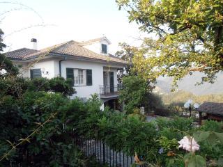 Casa Emma, Leivi
