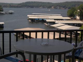 June Special! Great Lake View Condo, King Bed, Gas Grill, WiFi, One step in