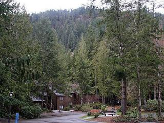 #84 Large Condo with a Private Sauna + Soaker Tub!, Glacier