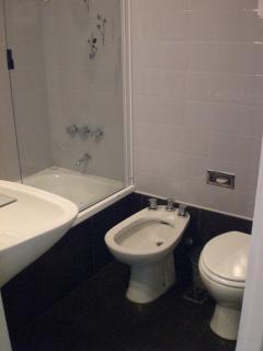 banho com banheira e ducha e secador de cabelo