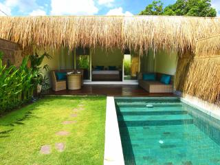 Tropical Suite Villa Canggu private own pool No 1
