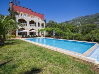 Holiday villa in İslamlar7Kalkan , sleeps 12: 176, Islamlar