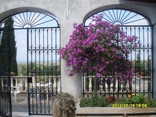 Macchia del Rosmarino, Torre San Giovanni