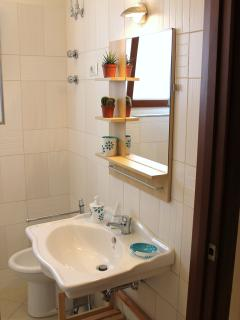Bathroom wash basin and bidet
