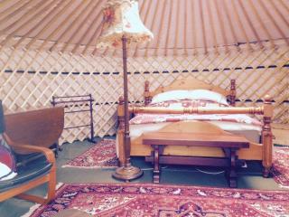 Inside Yurt Bronwyn