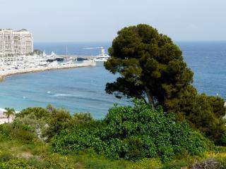 Appartement Monaco-Cap d'Ail proche Plage Vue Me