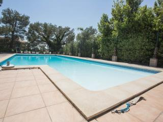 Villa la Pinede's heated large pool