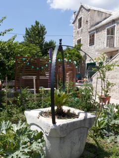 garden at Sara's