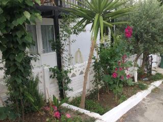 Turkey long term rental in Aegean, Ozdere