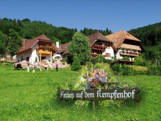 Kempfenhof, Seelbach