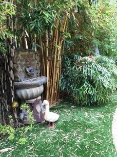 back yard fountain-The Green Man