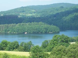 Chalet mitoyen 8p en bordure de foret, lac à 500 m, La Salvetat-sur-Agout