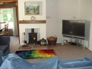 Lounge - cosy with a log burner