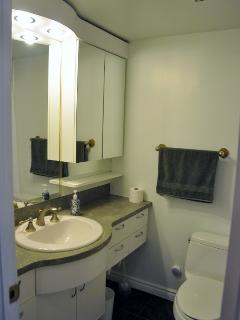 Designer Bathroom with Recessed Vanity Extra Large Mirrored Medicine Cabinets.