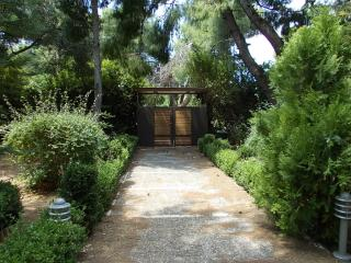 New Villa 100 m2 in a marvelous garden 1200 m2, Nea Makri