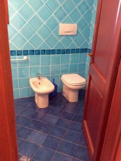 Bathroom (shower is behind the door)