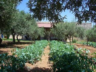 Casa con giardino immersa nel verde, Favignana