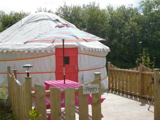 Poppy Yurt, Goonhavern
