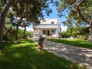 Villa Memia PP, Lendinuso